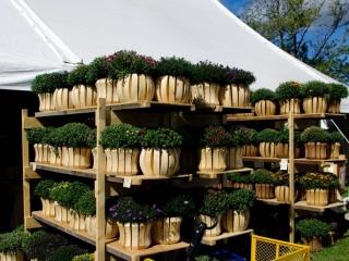 John Finnan, Handmade cedar Outdoor Planters at the Woodstock-New Paltz Art & Crafts Fair