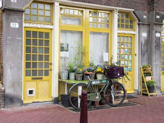 Mark Miller, Mark Miller Photography, European store front, bike, fine art photography, yellow color palette