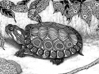 "MELANGE ""Seriously Fun Art"" by Kristin Moger: Wood Turtle, zentagle, hand-drawn, drawing"