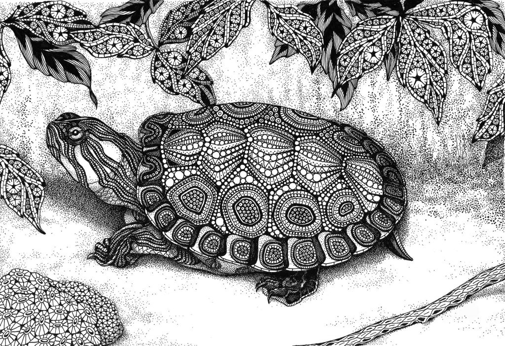 "MELANGE ""Seriously Fun Art"" by Kristin Moger: Wood Turtle, zentagle, hand-drawn, drawing"