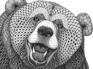 "MELANGE ""Seriously Fun Art"" by Kristin Moger: Grizzly Bear, zentagle, hand-drawn, drawing"